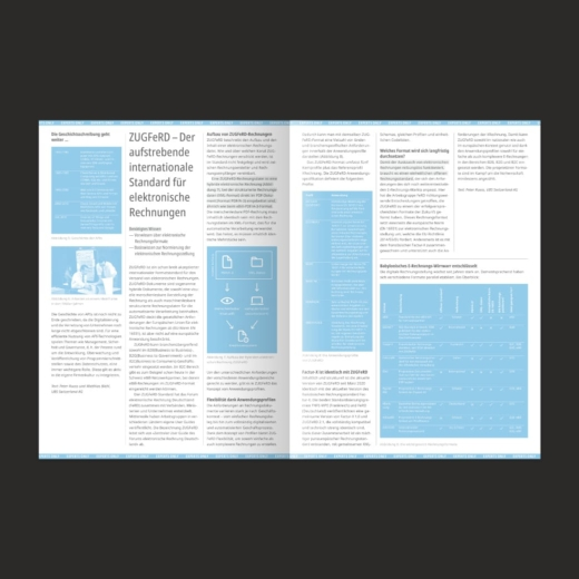 SIX PAY Magazin Editorial Design Experts Only